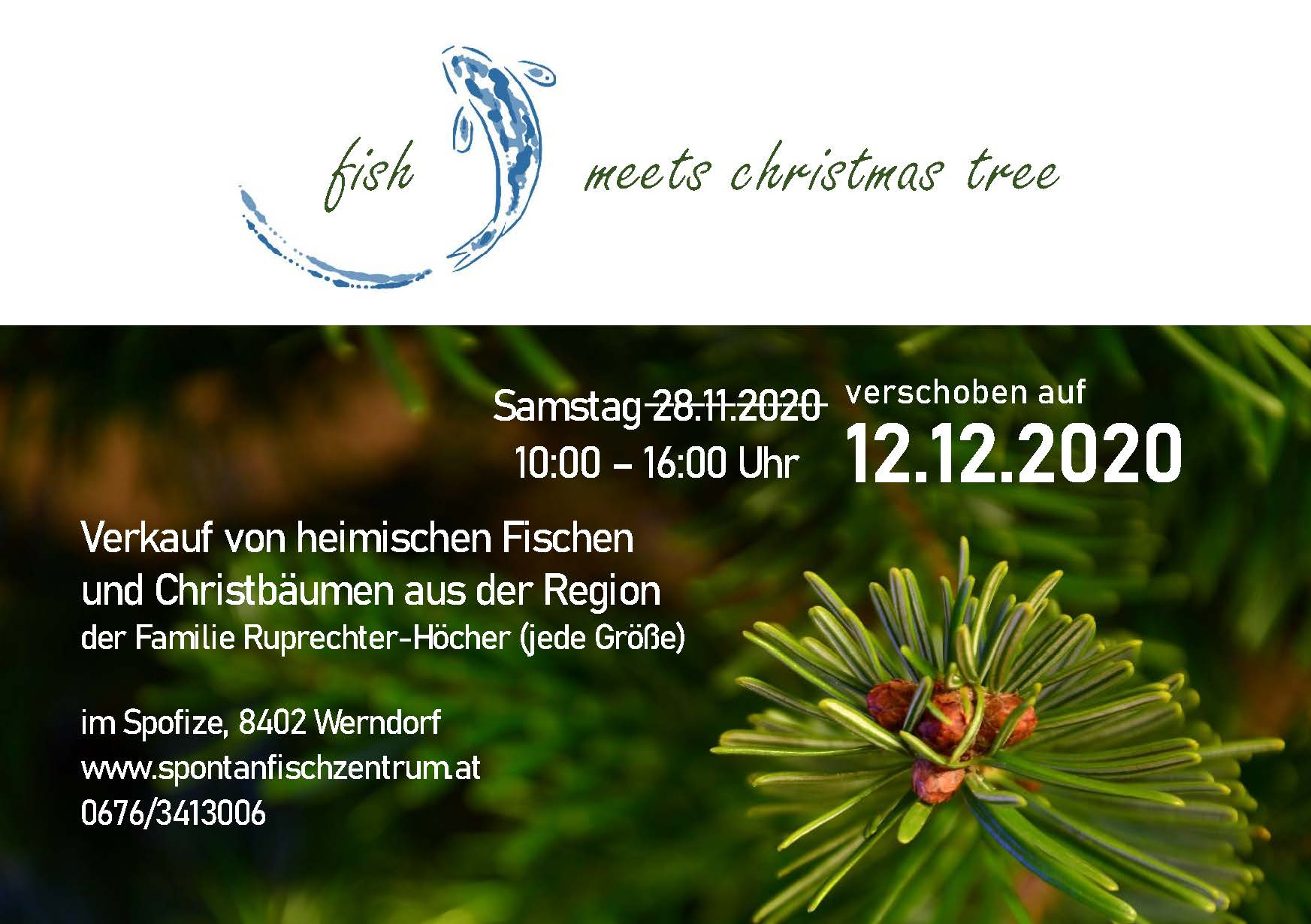 Fish meets Christmas tree_neu 12.12.2020